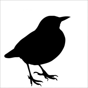 bird-220224_640